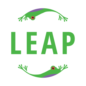 leap business obstacle course